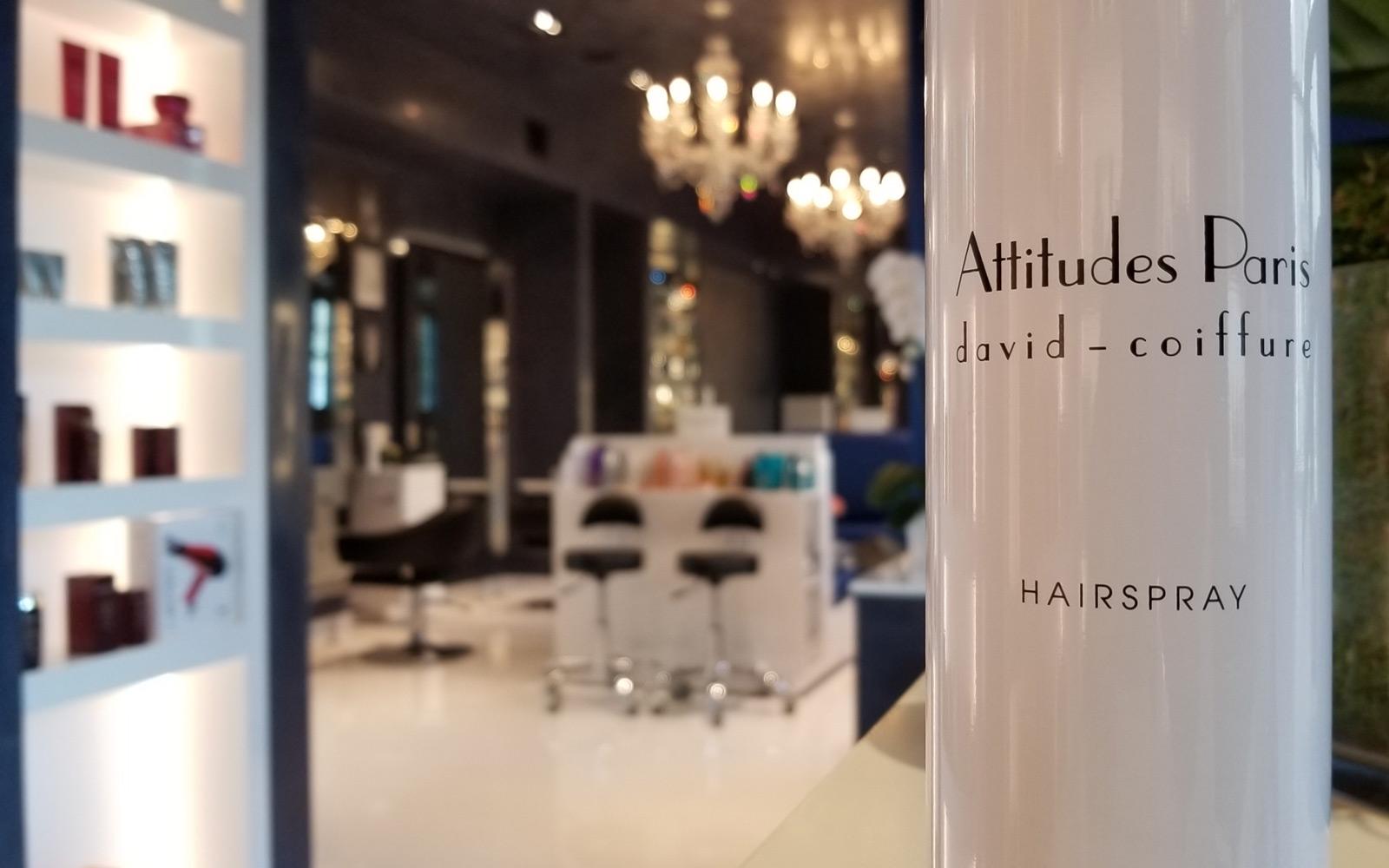 Attitudes Paris Coiffure – Houston Hair Salon – Now open on Potamac ...